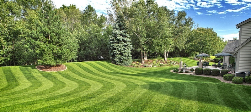 Comprehensive Guides On How To Buy The Best Lawn Mower
