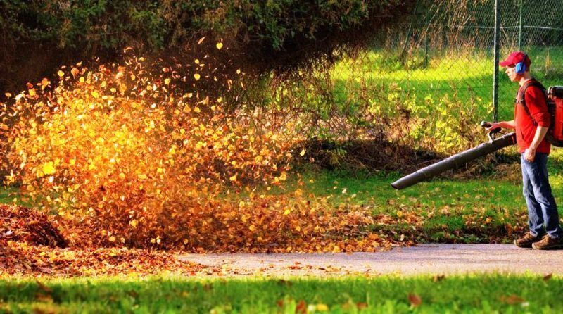 leaf blower techniques