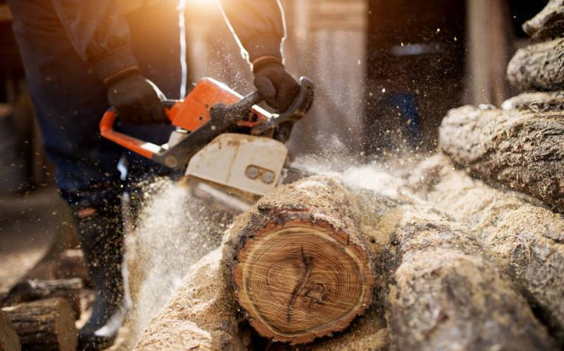 🏅Best Rated Chainsaw for Homeowners [Ultimate Guide 2019]