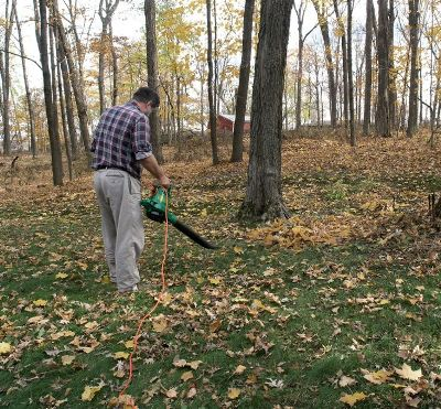 electric vs gas leaf blower